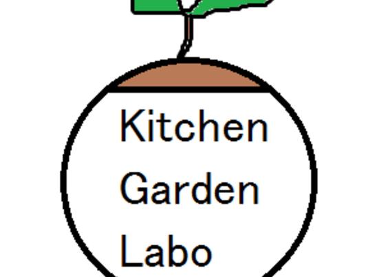ペットボトル菜園でベビーリーフを作ってみよう!の画像