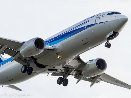 空美初心者歓迎!飛行機を撮る-初心者向け写真教室@京浜島つばさ公園の画像
