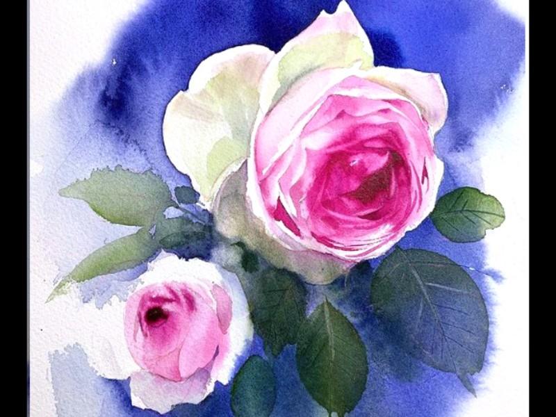 💖イラストレーターと描く透明水彩画_憧れのバラを描くの画像