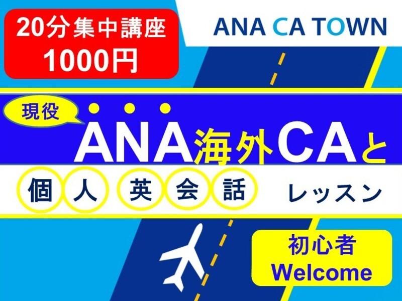 ANA海外CAが教える英会話20分/マンツーマン・オンラインの画像