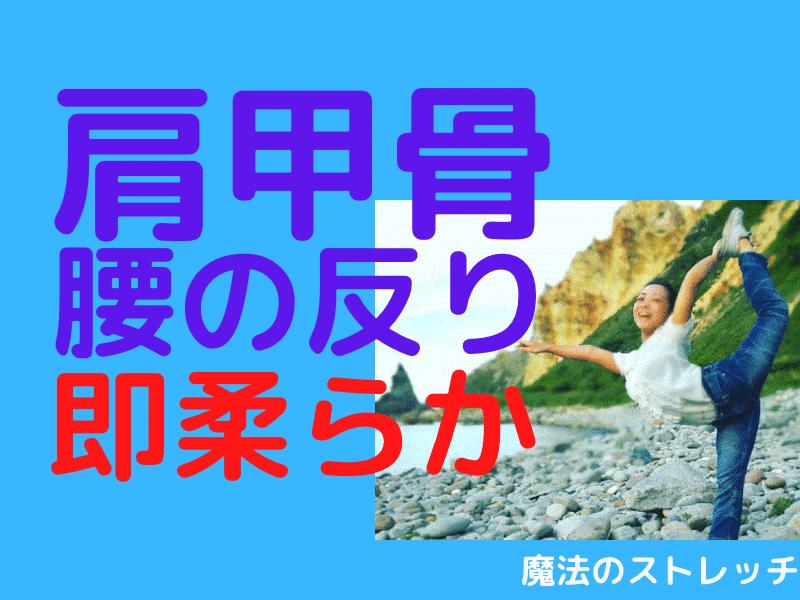 上半身がぐにゃりと柔らかくなる!魔法のストレッチ上半身編(新宿)の画像