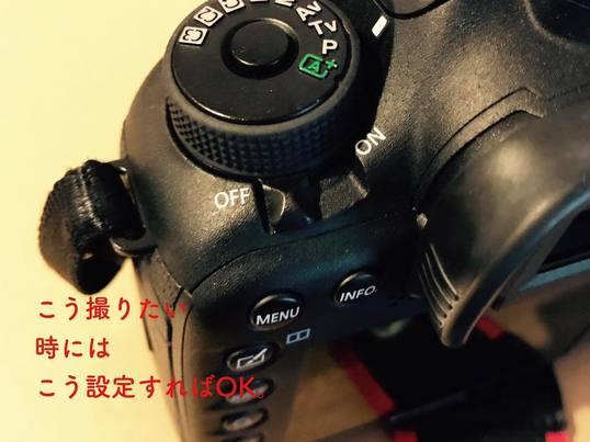 【女性・初心者限定】仲良くなるデジタルカメラ使い方講座の画像