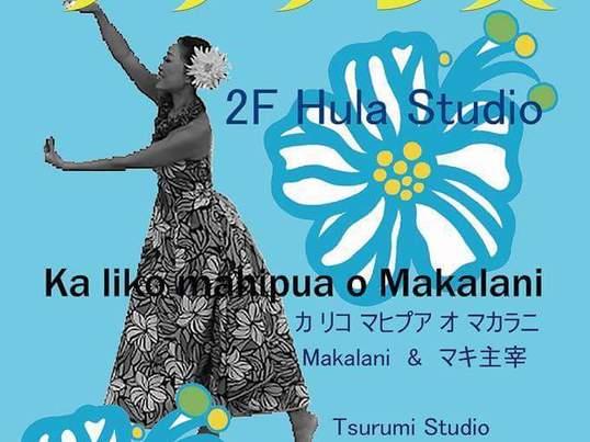 新規 癒しのHAWAIIを感じる女子力アップ体感Hulaの画像