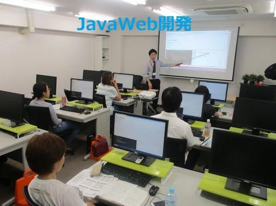 初心者向け1日JavaとMySQLでWeb開発入門講座の画像