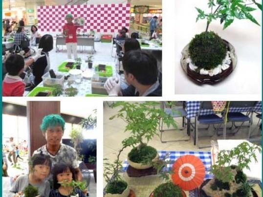 1月25日。東京池袋。苔玉2個を体験で作り&苔玉認定講師の説明会の画像