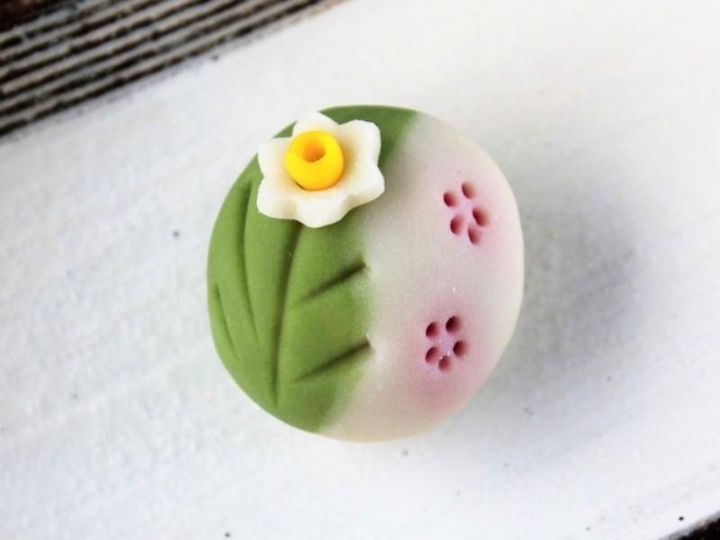 春らしく可愛い練り切り「早春の庭」を作ろう♪簡単なお抹茶点てつき!の画像