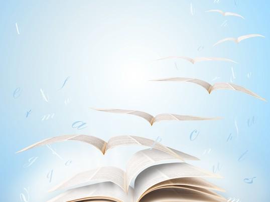 【プロが教える読みやすい本の作り方】人生が変わる!マジック電子書籍の画像