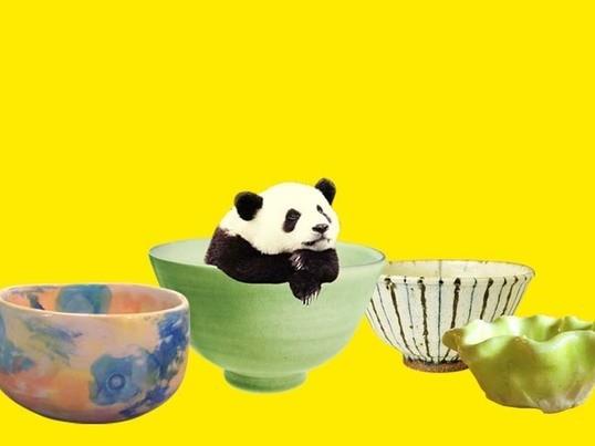 茶碗か小鉢を作る陶芸ワークショップ!の画像