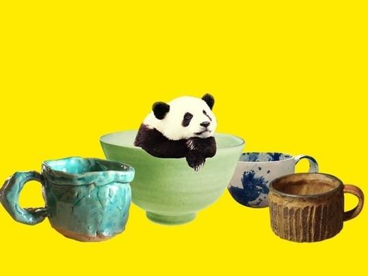 マグカップを作る陶芸ワークショップ!の画像