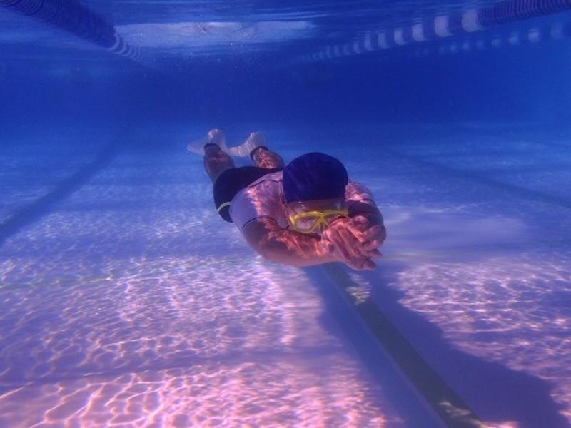 【初回参加者用】スキンダイビング/ドルフィンスイム講習(通常プールの画像