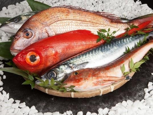 超高級魚をさばく☆フライデー限定☆さばき方教室!お土産付の画像