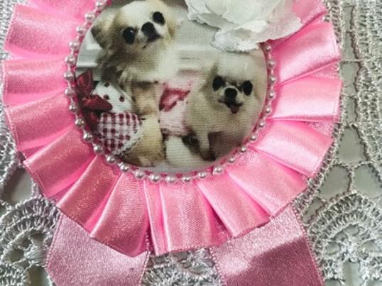 飼い主が作る愛犬のロゼット教室の画像