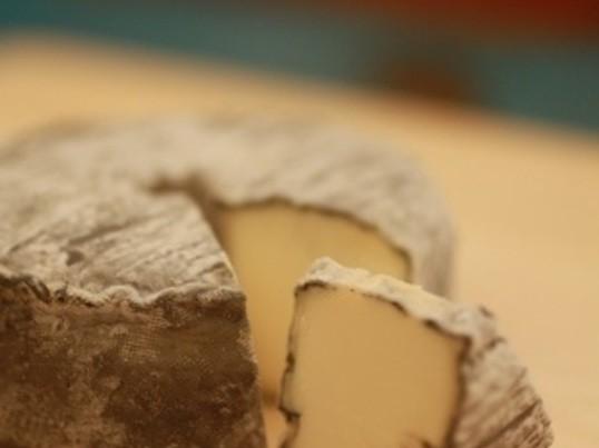 食べるチーズマラソン6講~ウオッシュチーズって普段買いますか? の画像