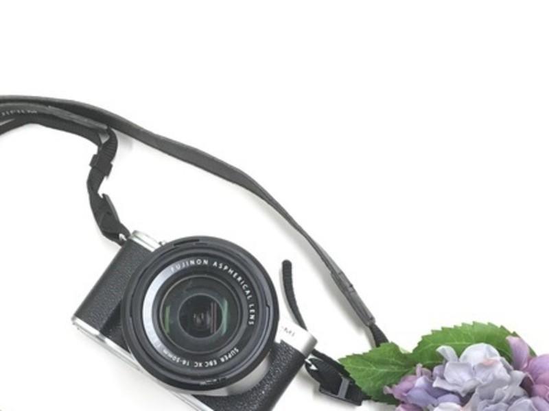 やさしい一眼カメラ教室 背景をぼかした写真を撮ろう!編の画像