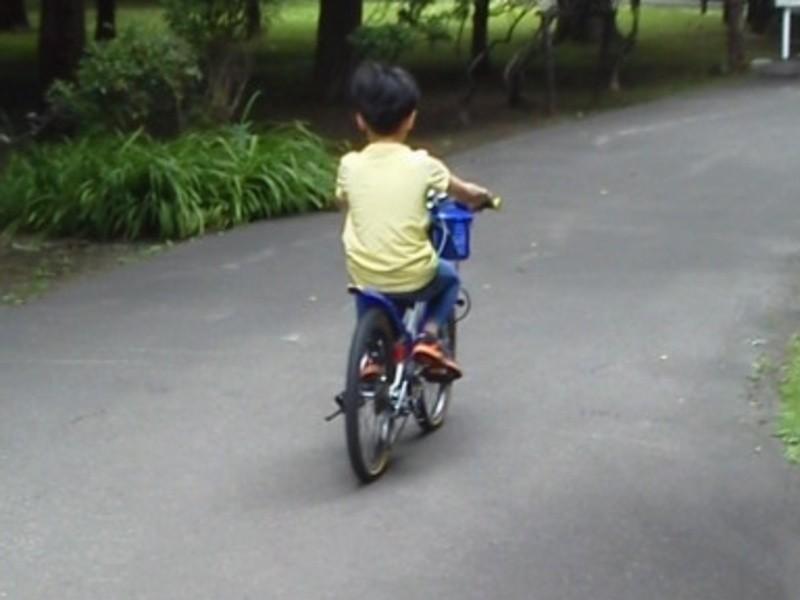 発育や発達に不安を抱えるお子さん向けの運動療法(療育)の画像