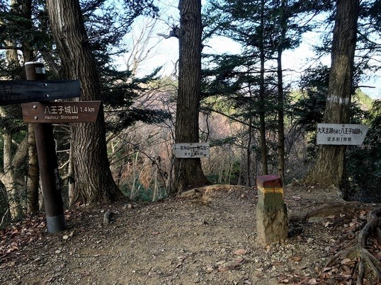初めての登山、最初のい~歩!(知る人ぞ知る南高尾山稜を歩こう) の画像
