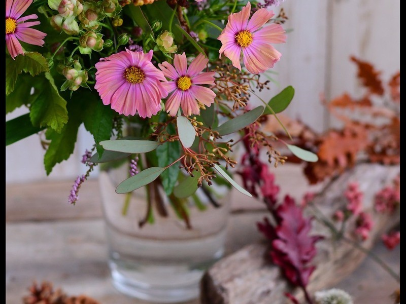 お花屋さんで、おしゃれな花の撮影講座の画像