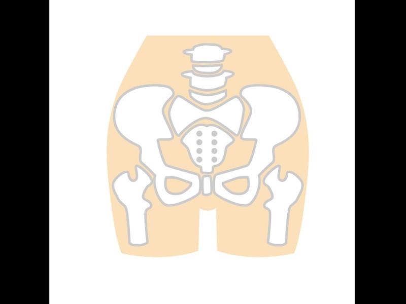 歪みを整える 一から学べる骨盤調整 業界19年のベテランが指導の画像