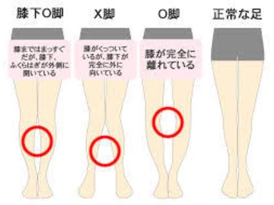 脚だけ痩せないあなた。身体の使い方、癖付けの感覚を覚えましょうの画像