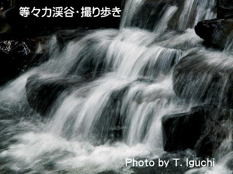 【水の描く絵・水流】&【光の絵・玉ボケ】を撮る!<初心者向き>の画像