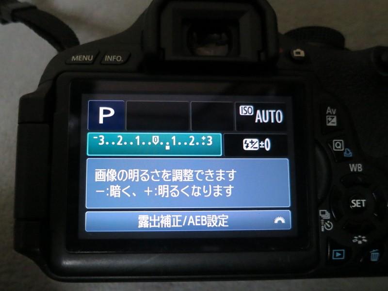 【キヤノン一眼レフ限定】[座学]初心者のためのカメラ[露出補正編]の画像