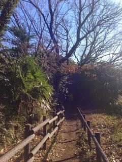 都心から20分でリラックス ~癒されまちの森歩き ヨガ&温泉付き~
