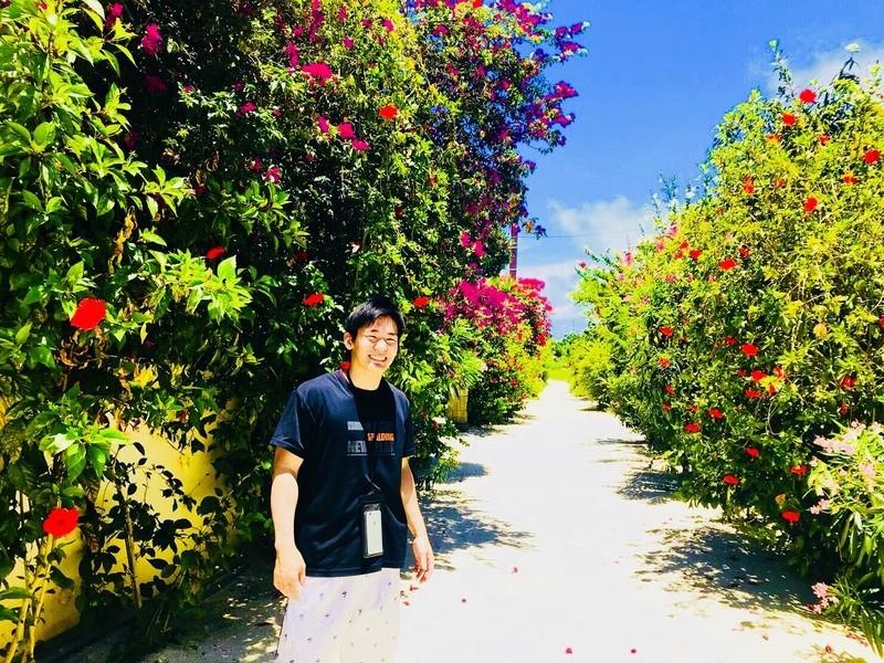 サラリーマンでも毎月沖縄に無料で行けるマイル講座の画像
