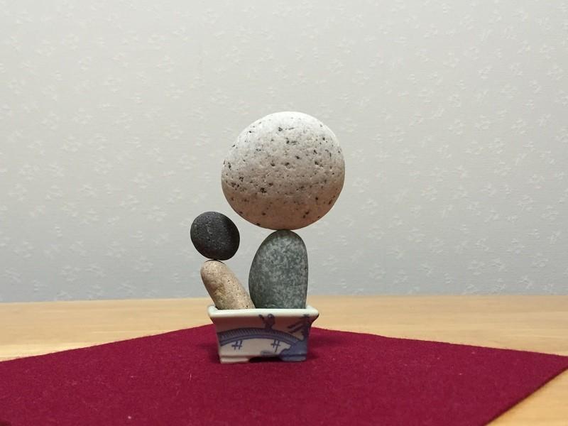 石花アートのエッセンス2~石ぼうずをつくってみよう!の画像