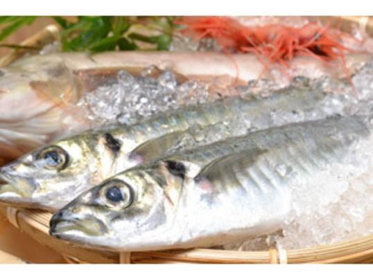 〜0から始めるお料理生活〜お魚を卸してみようの画像