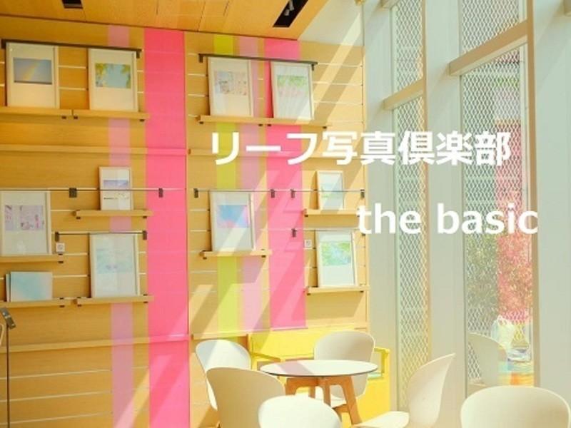 リーフ写真倶楽部 the basicの画像