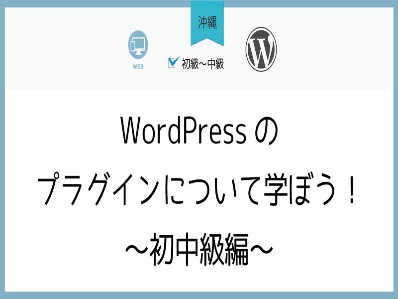 【沖縄】WordPressのプラグインについて学ぼう!~初中級編~の画像