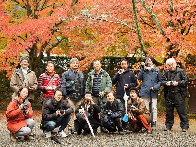 プロと一緒にイチョウ並木で撮影実習の画像