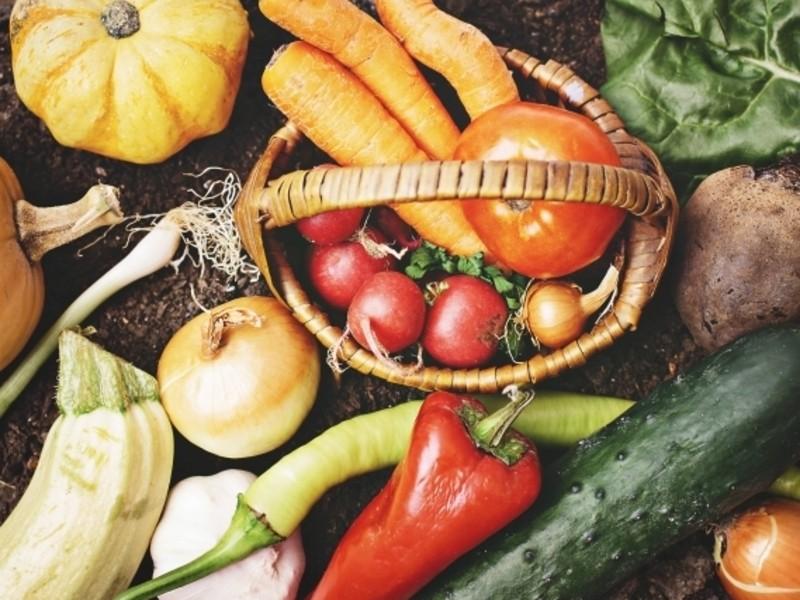 食で癒す「食害と除毒の理論講座」第2期の画像
