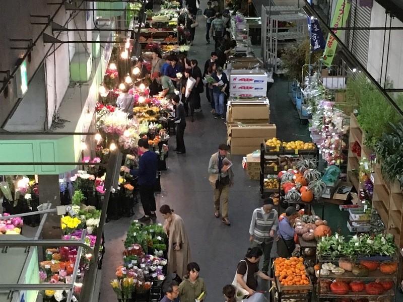 【朝活】日本最大の花市場「大田市場」の見学ツアーの画像