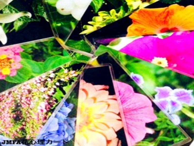 心スッキリ!直感で選ぶ花カードで心身を見つめる花カウンセリングの画像