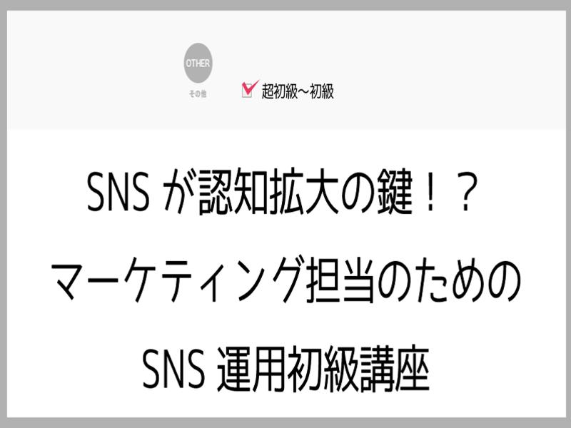 SNSが認知拡大の鍵!?マーケティング担当のためのSNS運用初級の画像