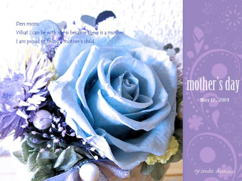 母の日!可愛い器とキレイが継続 プリザーブドのバラとカーネーションの画像
