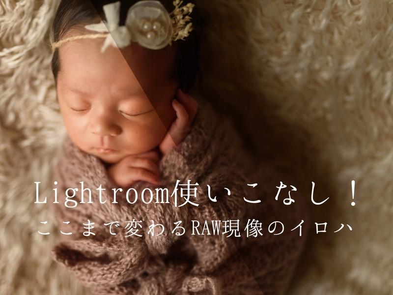 Lightroom使いこなし!ここまで変わるRAW現像のイロハの画像