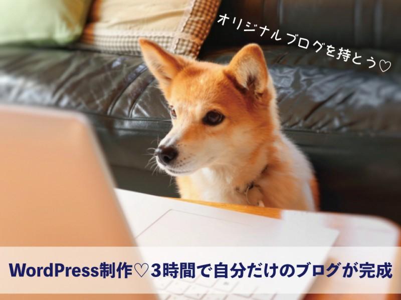 マンツーマンWordPress制作♡3時間で自分だけのブログが完成の画像