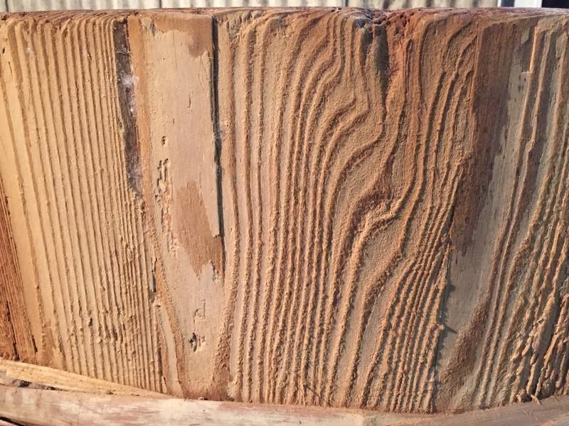 毎日続ける糀生活と発酵の一汁一菜 Vol.7木樽醸造味噌と塩分の謎の画像
