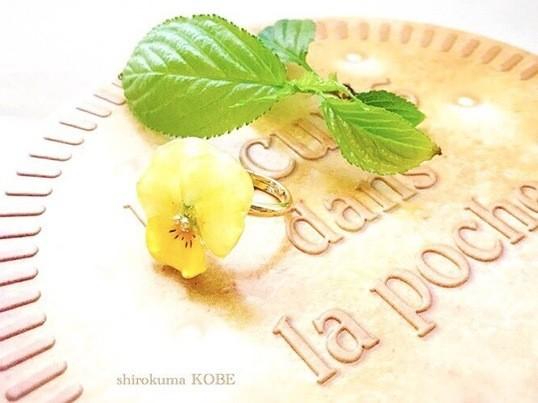 人気急上昇のレジンフラワーアクセサリー♡花の指輪を1dayで作ろうの画像