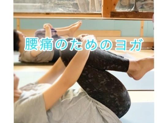 腰痛持ちのためのヨガ(少人数制)の画像