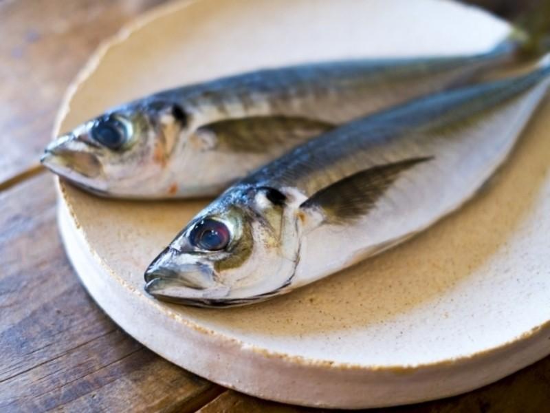 魚をさばこう!三枚おろしに挑戦&なめろうを楽しむワークショップの画像