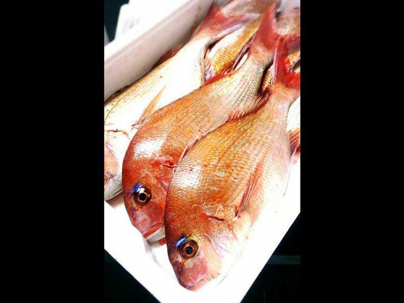 今が旬!真鯛をさばいてお魚料理おもてなしレッスン*鮮魚のお土産つきの画像