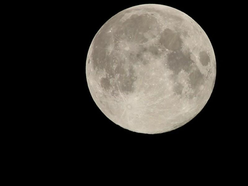 《季節限定写真講座》フィルムカメラで月を愛でる!の画像