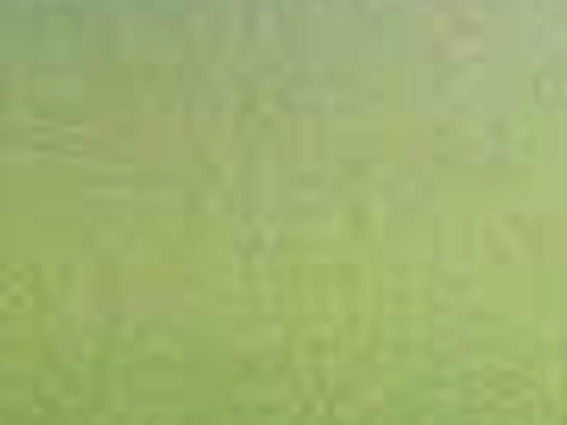 Detail1 bdc2d689 69d0 41d8 aa64 29c198a56da5
