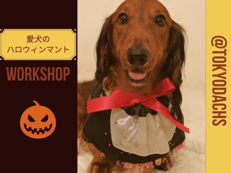 愛犬のハロウィンマントを作ろうの画像