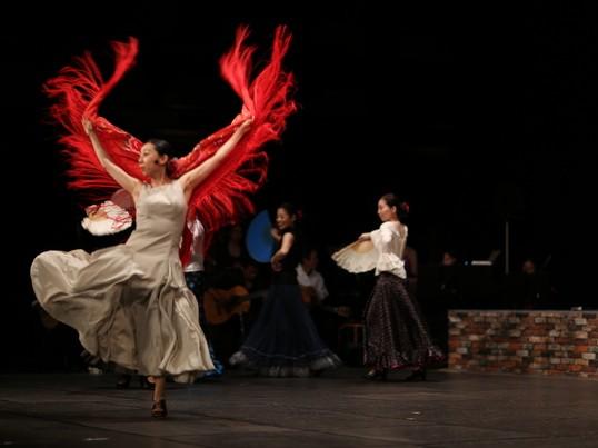 フラメンコ 舞踊団クラス体験の画像