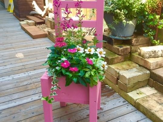 【親子DIY教室】木製チェアプランターに寄せ植え&ペイントします!の画像