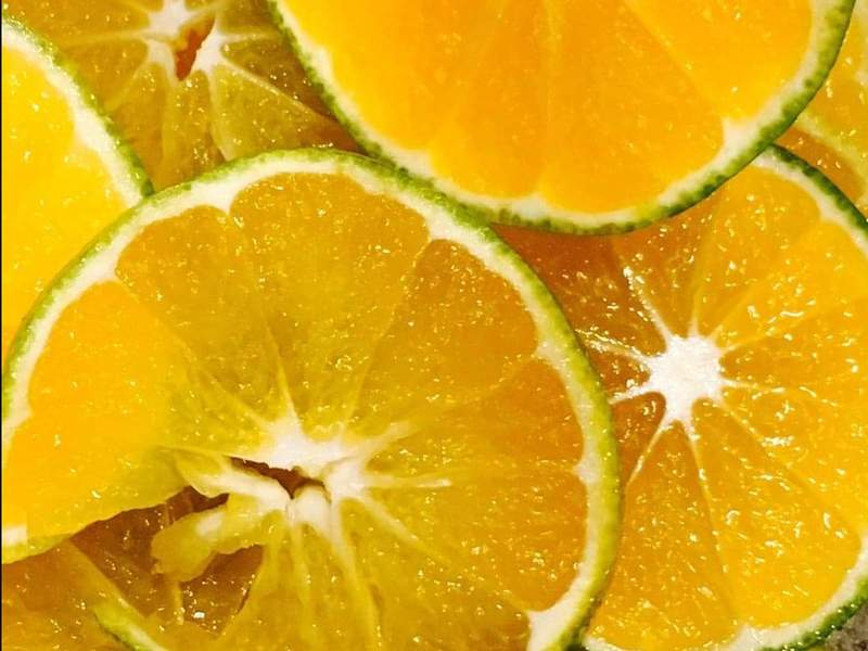薬膳ビューティー酵素ジュース講習の画像